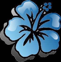 aloha-editor-logo.png